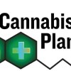 Turkey and Marijuana: Cannabis Planet TV airing in Pennsylvania for Thanksgiving