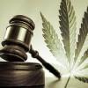 Pennsylvania Laws & Penalties